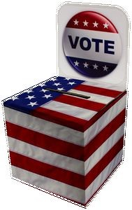 Small Ballot Box
